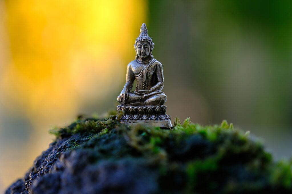 Opgestegen Meester Boeddha